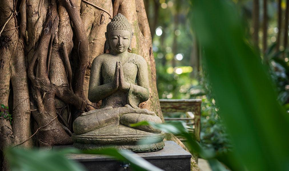 Aashyana Lakhanpal Gardens